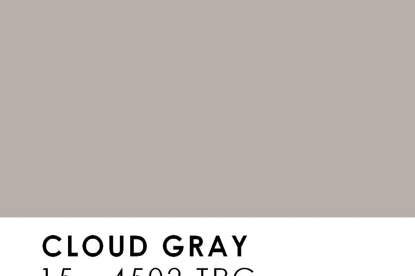 CORES-PANTONE-Cloud-gray